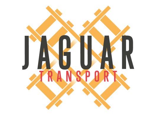 Jaguar Logo 2
